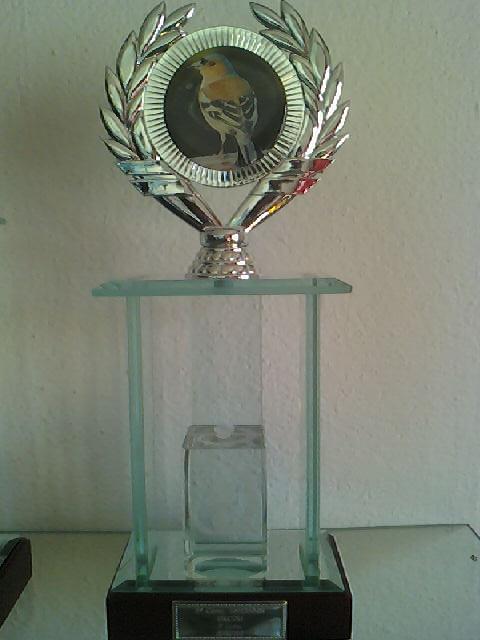 Concurso de Tentilhôes-C.R.Onze Unidos-Lisboa 130425_161018