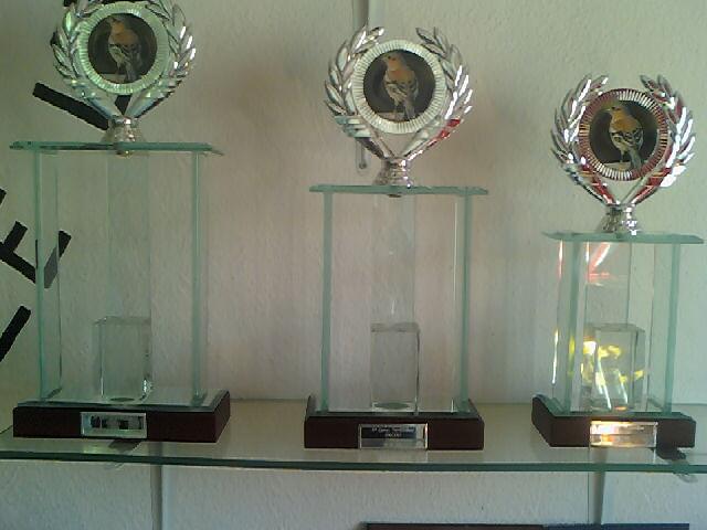 Concurso de Tentilhôes-C.R.Onze Unidos-Lisboa 130425_161044