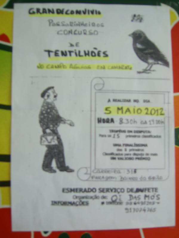 Concurso de Tentilhôes 2012 -Lisboa  IMG_2989