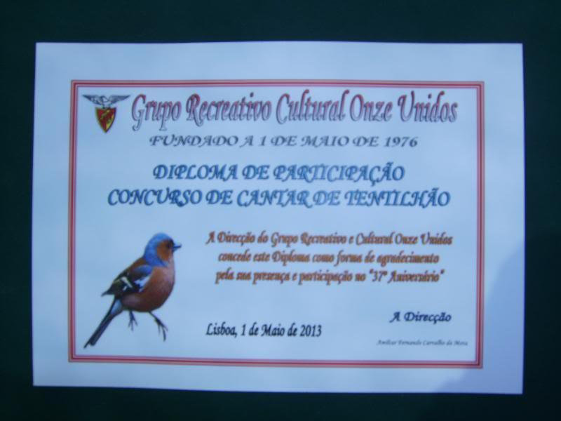 Concurso de Tentilhôes-C.R.Onze Unidos-Lisboa IMG_3977