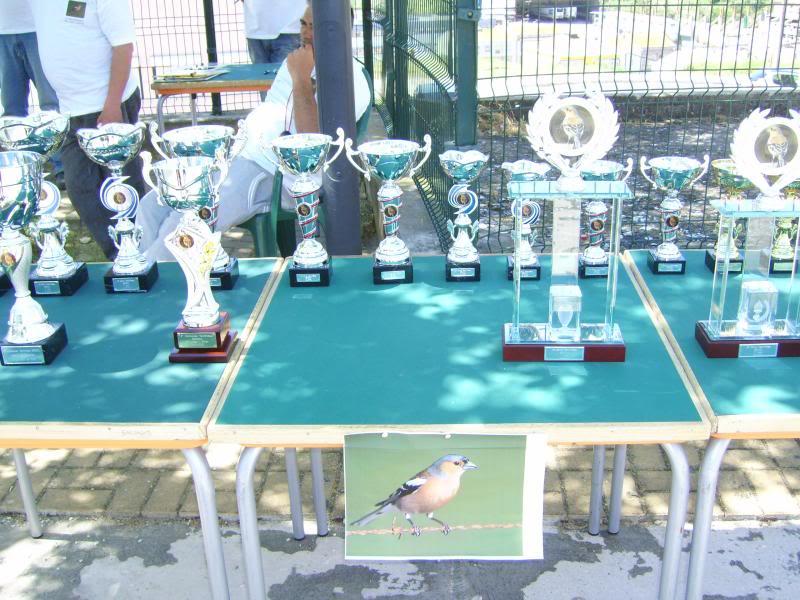 Concurso de Tentilhôes-C.R.Onze Unidos-Lisboa IMG_4000