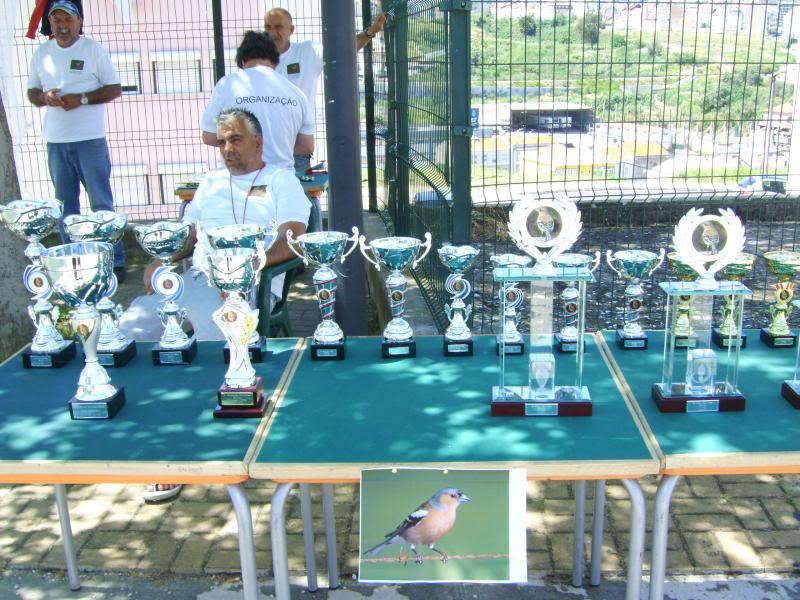 Concurso de Tentilhôes-C.R.Onze Unidos-Lisboa IMG_4002
