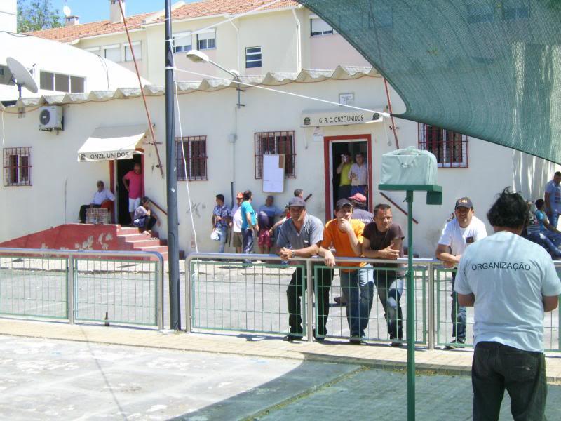 Concurso de Tentilhôes-C.R.Onze Unidos-Lisboa IMG_4009