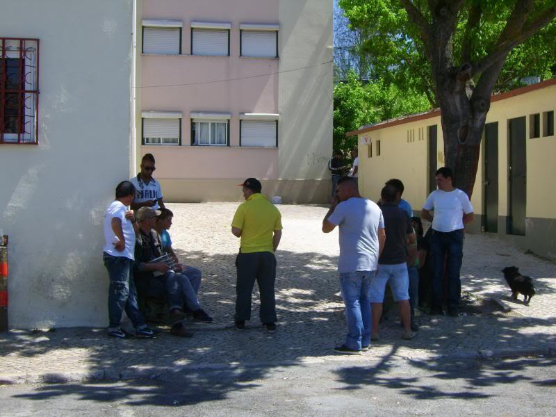 Concurso de Tentilhôes-C.R.Onze Unidos-Lisboa IMG_4016