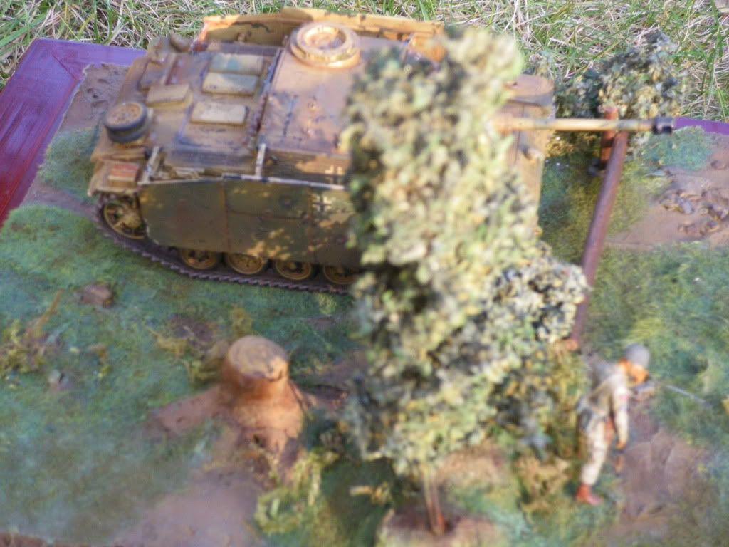 STUG - Stug III Ausf G.... IMGP0307