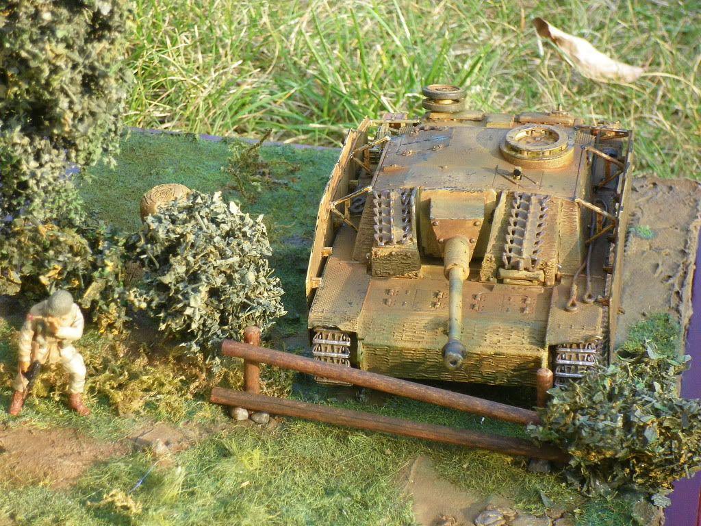 STUG - Stug III Ausf G.... IMGP0310