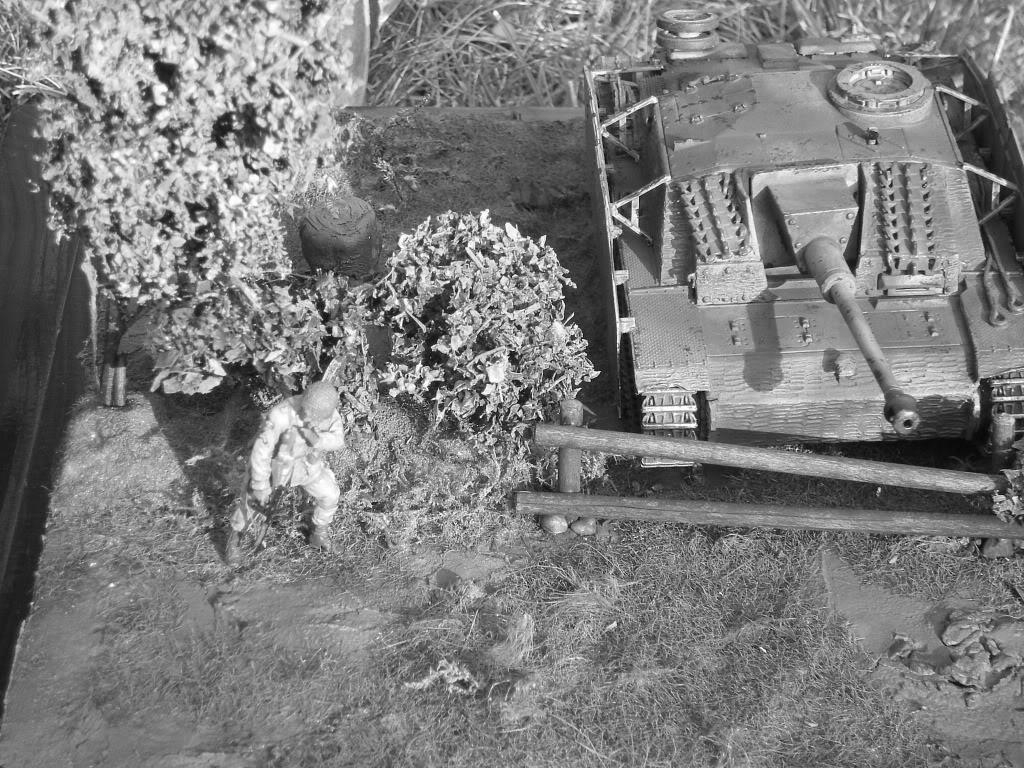 STUG - Stug III Ausf G.... IMGP0311