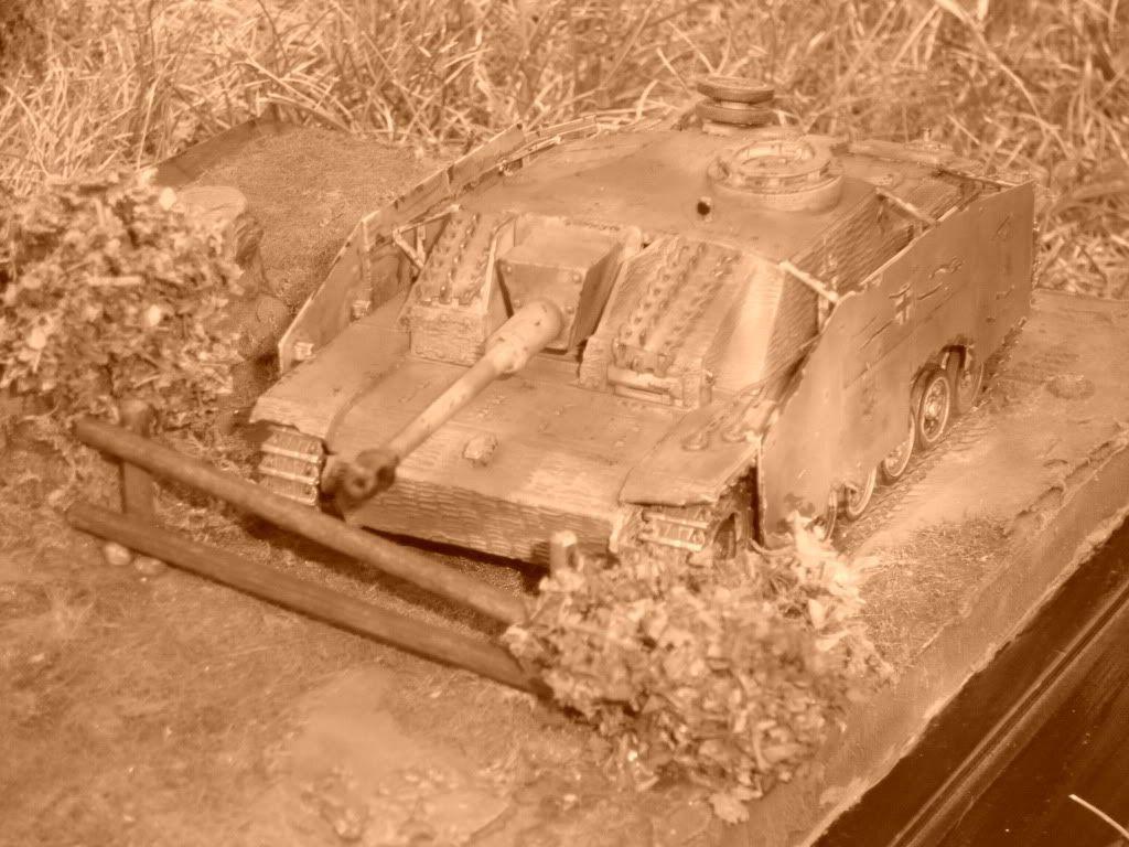 STUG - Stug III Ausf G.... IMGP0312