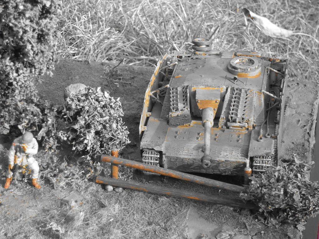 STUG - Stug III Ausf G.... IMGP0314