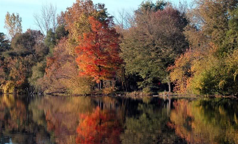 Autumn Autumnmich