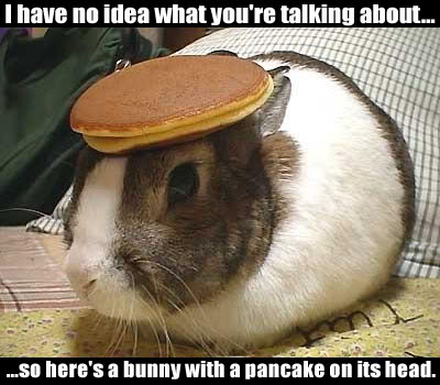 Hey You Miss. I Dont Know What The Fuck Your Name Is!! Bunny-pancake