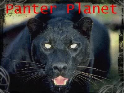 Panter Planet