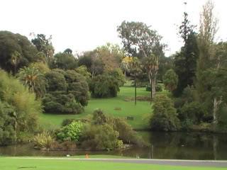 Royal Botany Garden PIC_0835-1