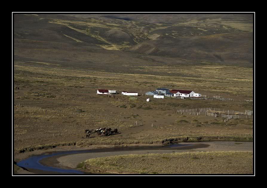Ma maison de campagne, j'ai rentré les chevaux JPR_20080229_194642