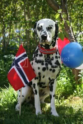 April - Norge/Norsk Mai_351