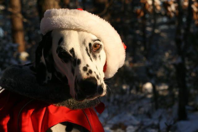 """Desember - """"Jul"""" Desember2010327"""