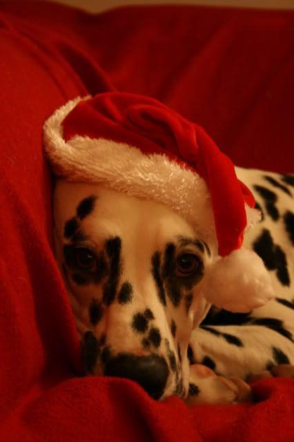 """Desember - """"Jul"""" Desember2008019"""