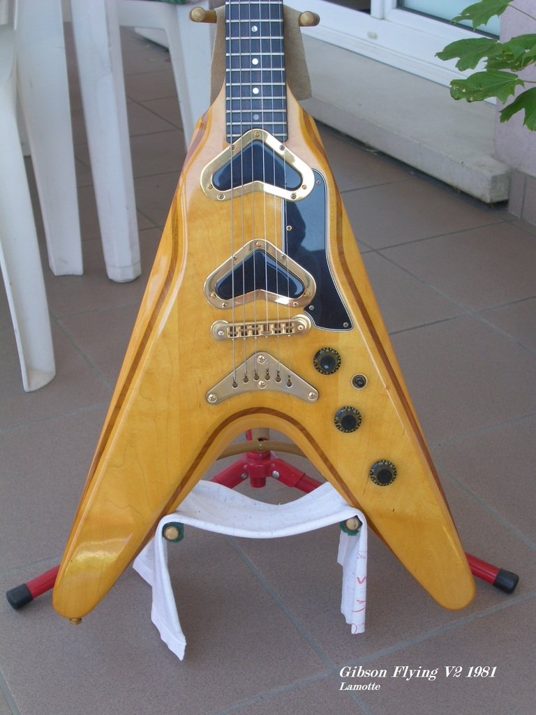 Gibson Flying V2 PICT0024_zpshl3mn1rk