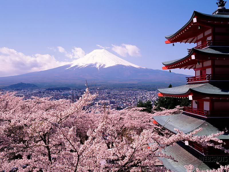 Japan and its culture SakuraTreesJapan