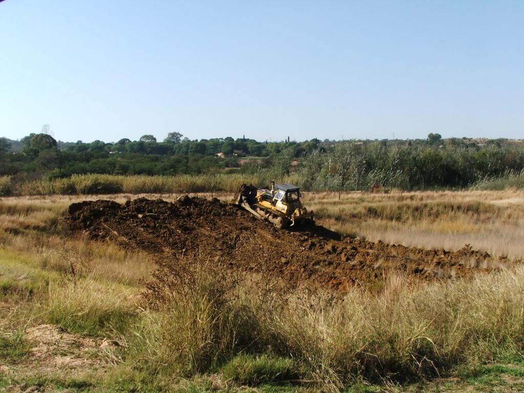 A new mud pond at Orient Koi Farm DSCF6363