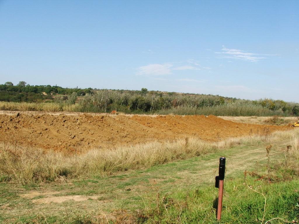 A new mud pond at Orient Koi Farm DSCF6366