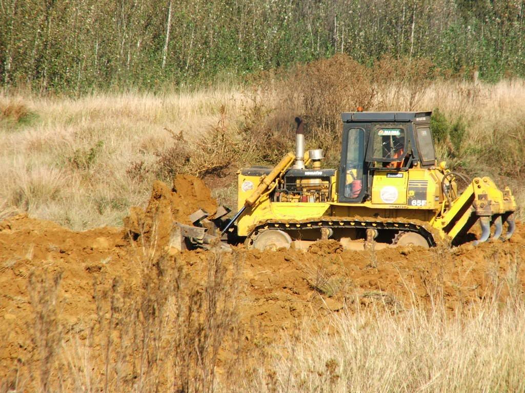 A new mud pond at Orient Koi Farm DSCF6367