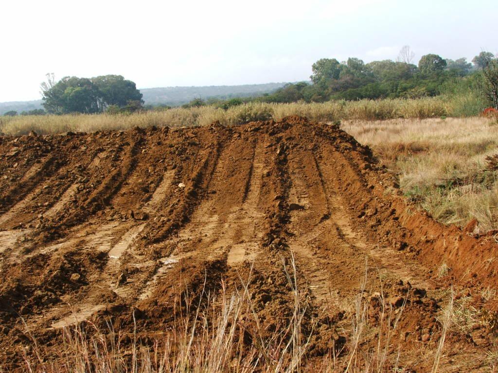 A new mud pond at Orient Koi Farm DSCF6370