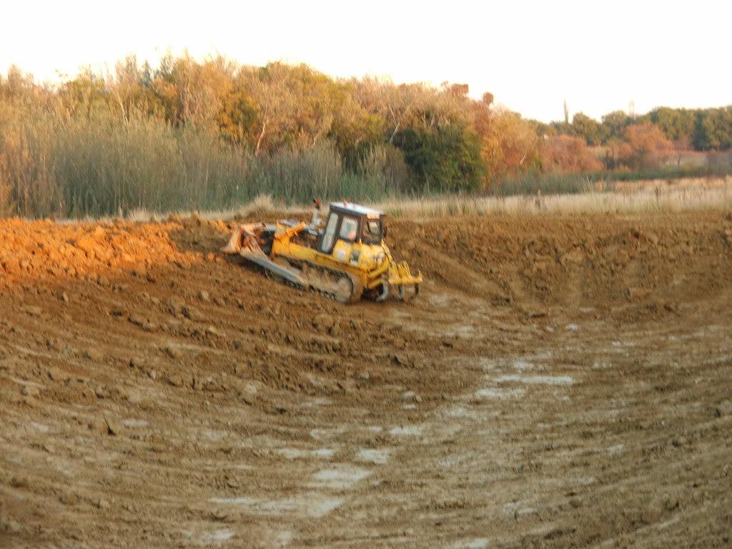 A new mud pond at Orient Koi Farm DSCF6372
