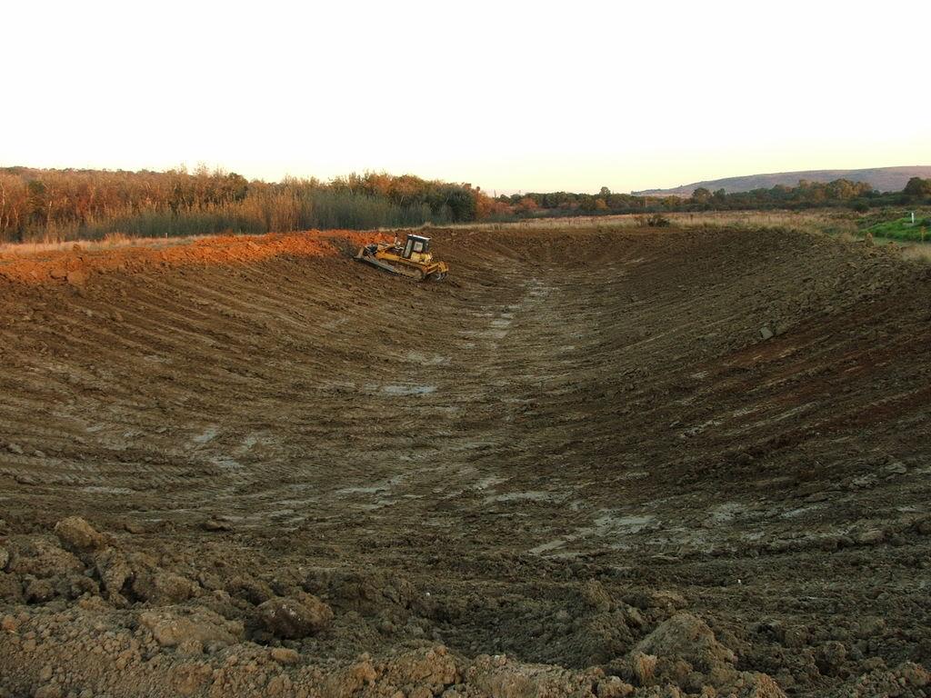 A new mud pond at Orient Koi Farm DSCF6373