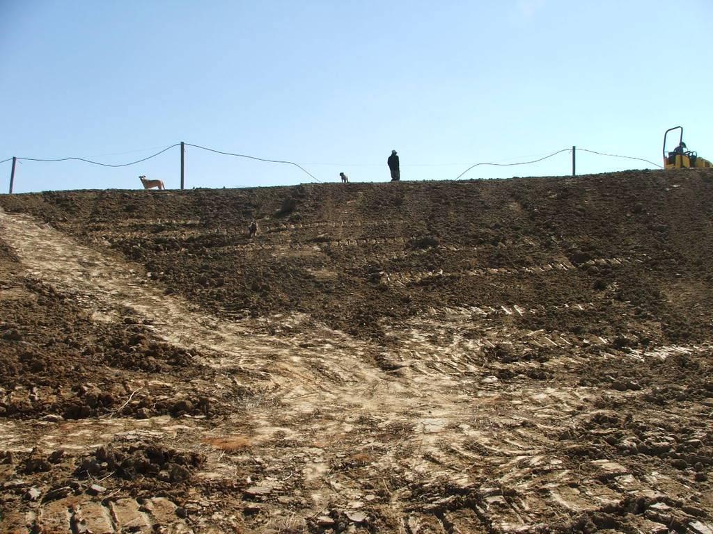 A new mud pond at Orient Koi Farm DSCF6397