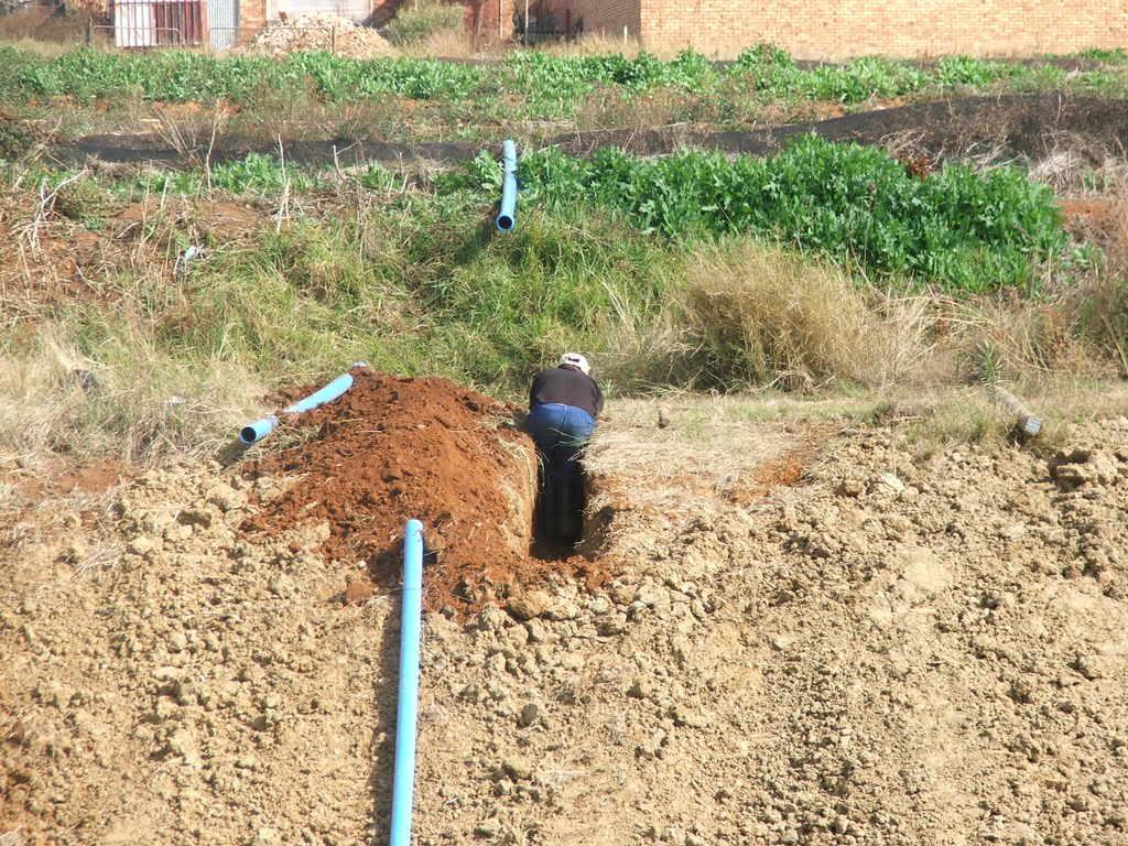 A new mud pond at Orient Koi Farm DSCF6416