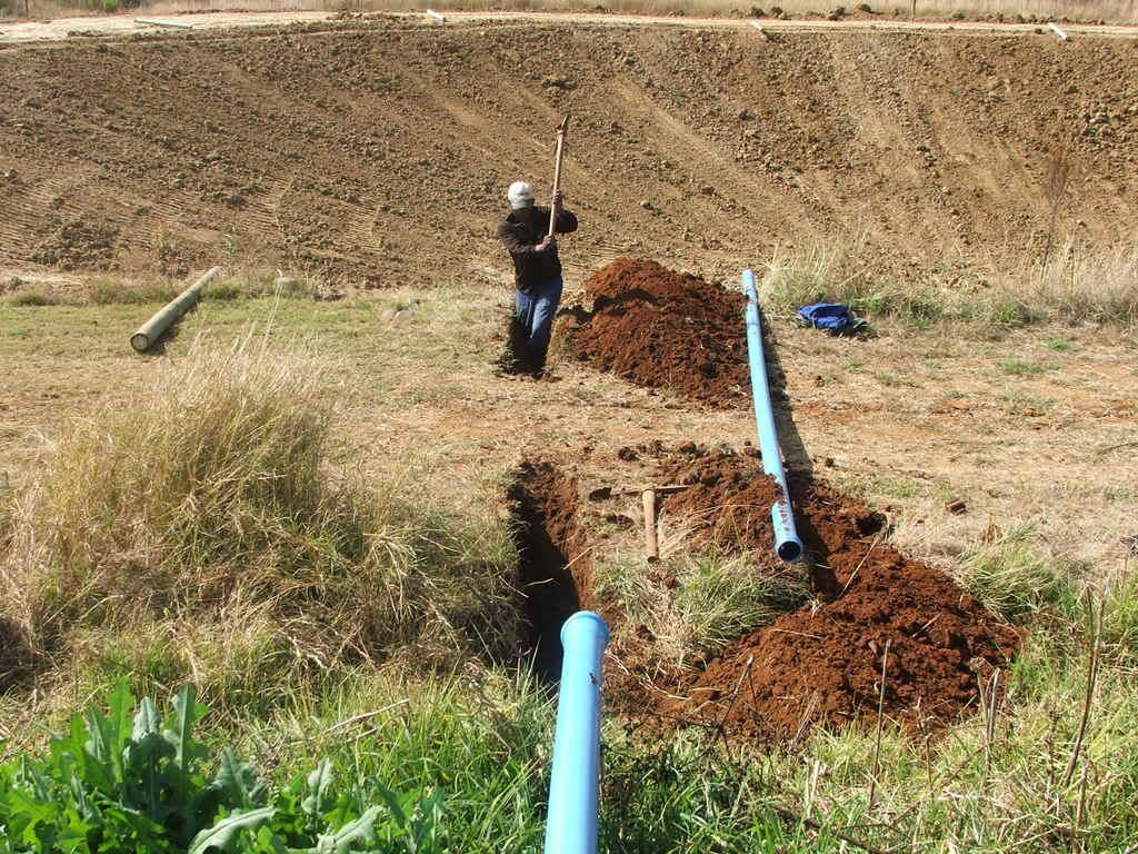 A new mud pond at Orient Koi Farm DSCF6420