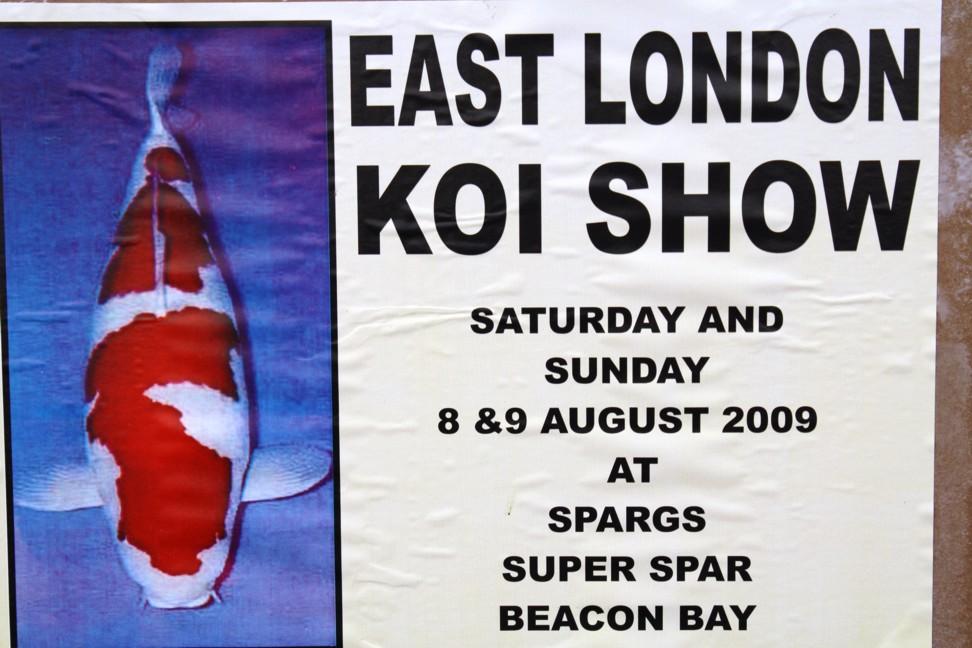 East London Koi Show 2009 New-16