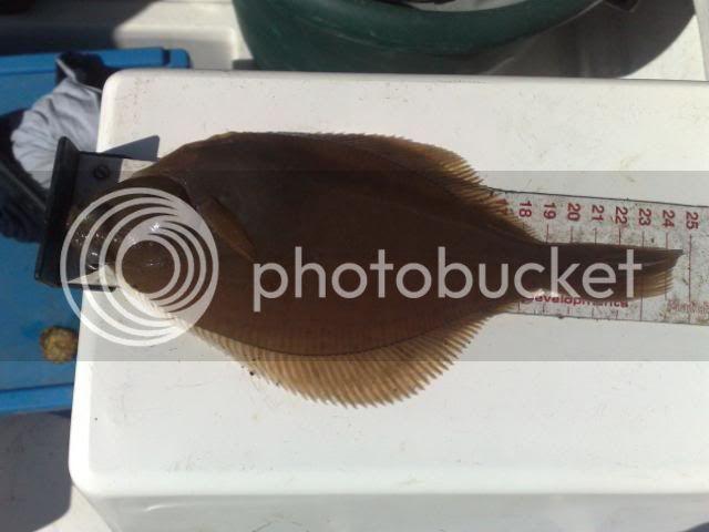 Boat Match No2 24052009076