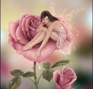 Hoa và bướm - Câu chuyện tình bất tận của tự nhiên Danghoa