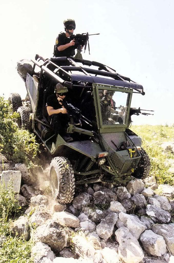 Armes de fabrication Israelienne Desert_raider3