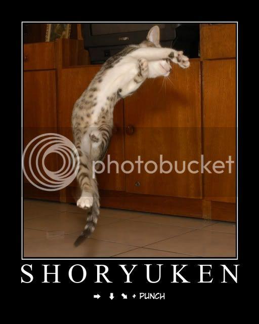 some funny pics Shoryukenmotivatorqv8