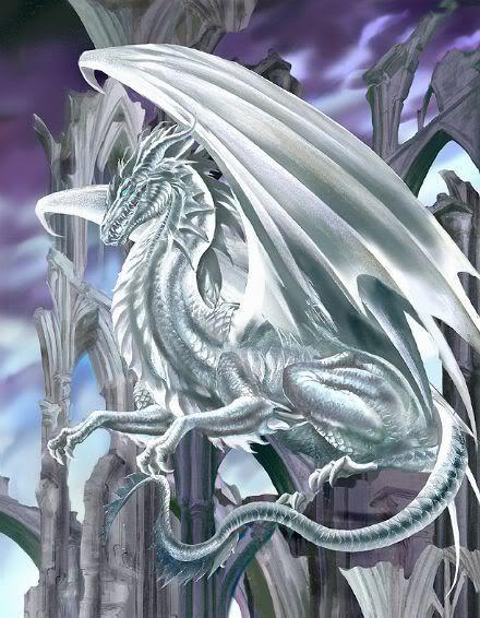 Taharu~ dragon god of light DragonL