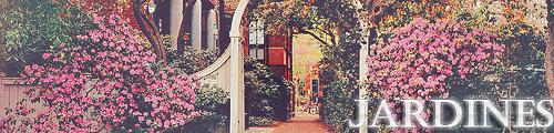 Rockford University Jardines-1