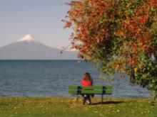 Những Đoá Từ Tâm - Thơ Tình Yêu, Tình Nước Autumngirl