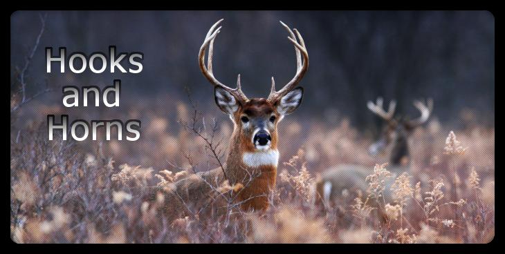 Hooks and Horns