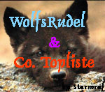 Top 100 Wolfsrudel & Co.