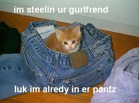 LOLWUT Stealyourgf