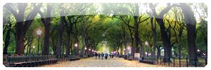 ·· Parque Principal