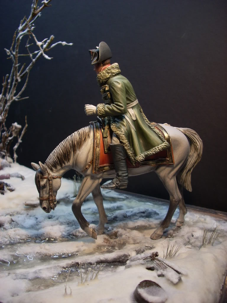 Napoleon  la retraite de Russie verlinden 120mm - Page 4 DSCN3322