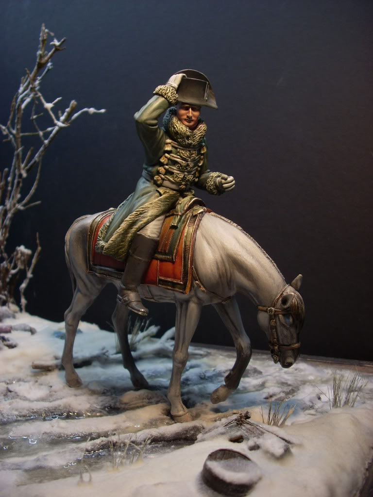Napoleon  la retraite de Russie verlinden 120mm - Page 4 DSCN3323