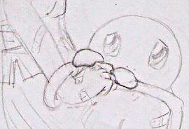 El comienzo del viaje de Iruka Squir