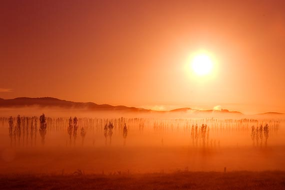 Beautiful Examples of Sunrise Photography - Page 2 28