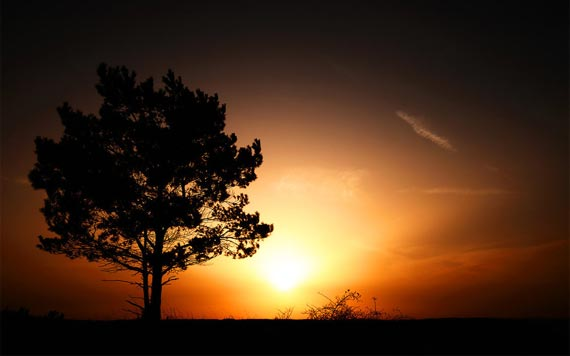 Beautiful Examples of Sunrise Photography 3-2