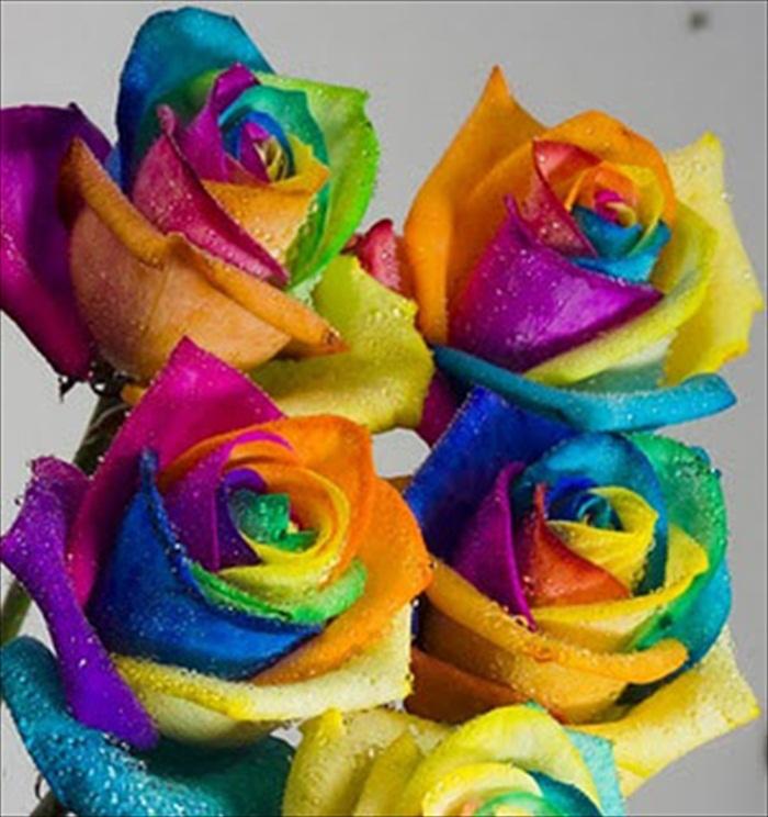 World Most Beautiful Flowers.rtf 486_zps61219f67